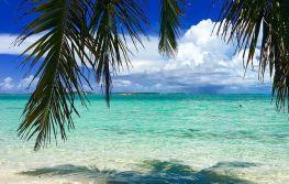 Florida i Bahami Nova godina