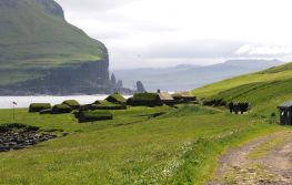 Island i Farski otoci
