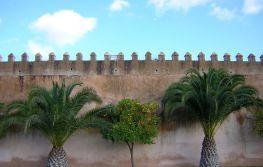 Maroko 8 dana
