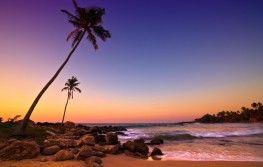Šri Lanka - tura i odmor
