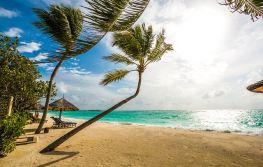 Dubai i Maldivi 9 dana