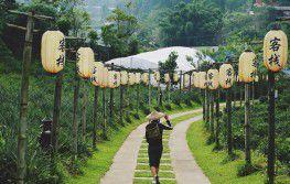 Tajland - Bangkok i odmor u Hua Hinu