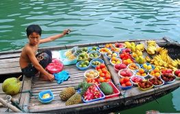Vijetnam i odmor na Baliju 11 dana